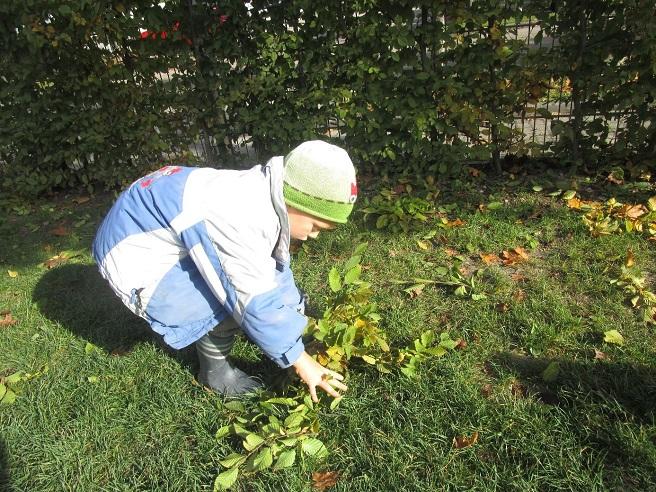 Kita Kind sammelt Blätter