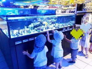 Krippenkinden besuchen Zoohandlung