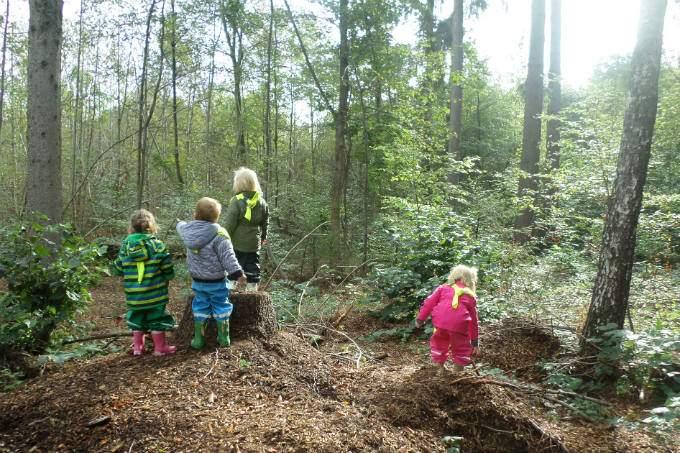 Kinderkrippe-Fuerstenried-Wald-und-Naturtag - Wichtel Akademie München