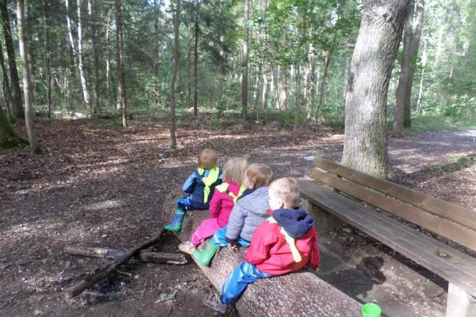 Kinderkrippe-Fuerstenried-Waldtag - Wichtel Akadmie München
