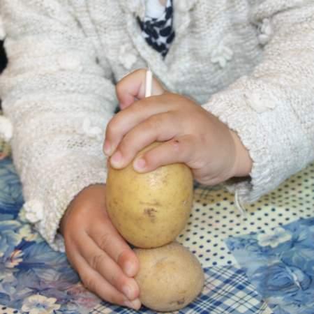 Kartoffel - Kartoffelmännchen - Wichtel Akademie München